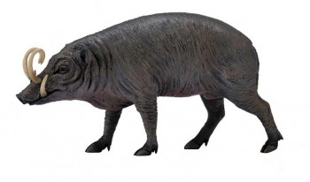 ANIMAL COLLECTA BABIRRUSA 90188727